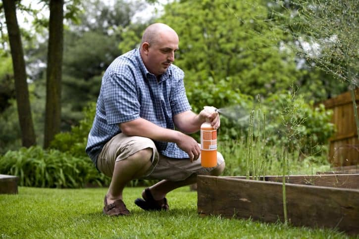 Does my lawn need humic acid?